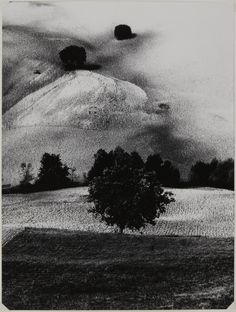 Mario Giacomelli N° 14 1958