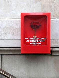 In case of...