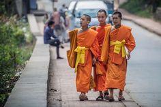 Young #monks in #LuangPrabang, #Laos - www.gdecooman.fr portfolio, cours et stages photo à Lille, visites guidées de Lille