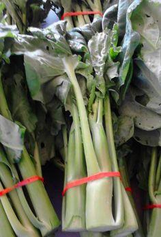 Super gai lan. Crossbred with Kohrabi.   From grower Shur Yang
