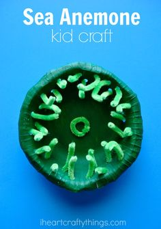 Sea Anemone Ocean Kids Craft. Perfect craft for kids when learning about the ocean or after exploring tide pools.
