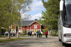 Vineyard, South Ostrobothnia province of Western Finland. - Punaisen Tuvan Viinitila, Alajärvi, Etelä-Pohjanmaa.