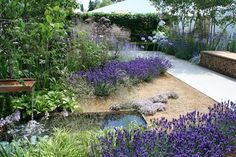 Vestra Wealth's Vista Garden