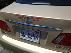 Nice pinstriping on this newish Lexus ES 350, to see more please visit: http://bit.ly/1m47jn9