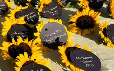 Escort Card, Wedding, Party - guest names' written on circular black cards pinned to the center of sunflowers