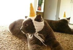 (4) Name: 'Crocheting : Unicorn Cat Hat Dog Hat Costume for Cats