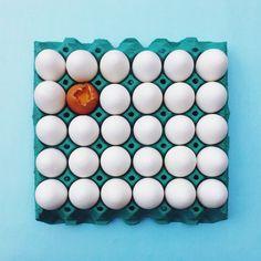 Eggs | VSCO Grid | Leandro Viva