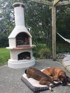Even our furry friends love lazing away in front of the Rondo BBQ / Outdoor Fireplace! Thanks Lloyd for sharing this awesome shot! Pizza Oven Outdoor, Backyard, Patio, Barbecues, Friends In Love, Bbq, Mountain, Xmas, Cakes