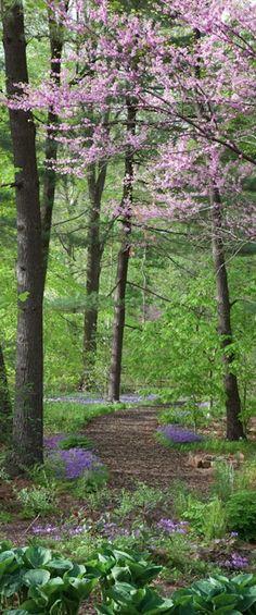 Bells Woodland at Chanticleer Garden in Wayne, Pennsylvania photo: Chanticleer Garden Guide, Garden Paths, Garden Landscaping, Beautiful Landscapes, Beautiful Gardens, Woodland Garden, Forest Garden, Walk In The Woods, Parcs