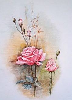 Anchal Shah Color Pencil Sketch, Colored Pencils, Sketches, Flowers, Painting, Art, Colouring Pencils, Drawings, Art Background