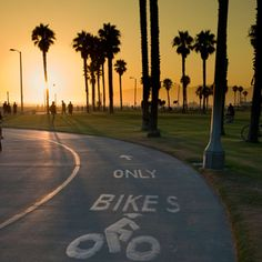 Venice Beach - Travel+Leisure - Things to Do