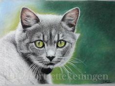 """Kitty"" realistic portrait drawing made with pastelpencils"