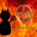 Monsanto aceptó la última oferta de Bayer, con lo cual se fusionarán ambas empresas.