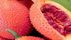 Gac fruit images wallpaper