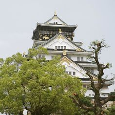 Osaka Castle again. This time in the day!  #TheTravelIntern #osakacastle #Skyscannersg