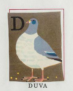 Rock dove - nice illustrations from staffan wirén