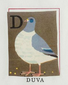 Rock dove - nice illustrations from staffan wirén