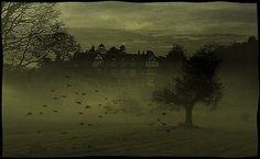 beautifully eerie -  thewoomachine, via flickr