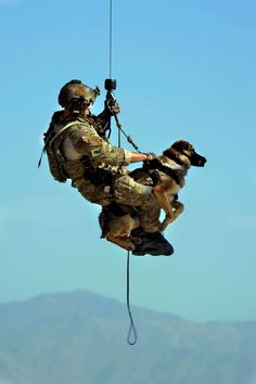 Hanging in there w/ faithful K9 partner, Nice Pic..