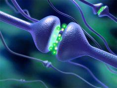 Mejora tu Fibromialgia elevando los niveles de Serotonina.