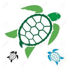 Resultado de imagen para tortuga carey caricatura
