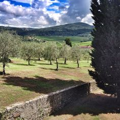 Tuscan country side