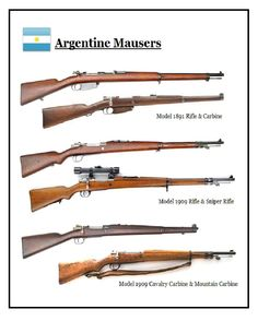 13 Best argentine mauser 1891/1909 images in 2017 | Anti materiel