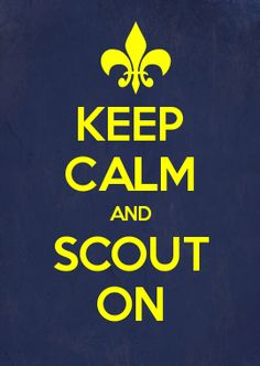 scout on