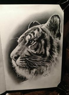 Pin by Alexis Blindauer on Tattoos Tiger Drawing, Tiger Art, Asian Tattoos, Top Tattoos, Lion Tattoo, Cat Tattoo, Tattoo Sketches, Tattoo Drawings, Art Tigre