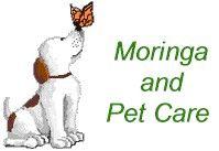 Zija's Moringa Products Improve Pet Health, too!