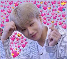my lil chick baby take this loves for ya K Pop, Funny Kpop Memes, Bts Memes, Heart Meme, Cute Love Memes, Jisung Nct, Heart Emoji, Meme Faces, Wholesome Memes
