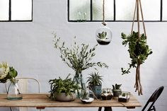 Sheridan Studio will allow customers to create, curate and style their home with a full home offering. Table Centerpieces, Designer Homewares, Home Interior Design, Interior, Hanging Terrarium, Eclectic Home, House Interior, Studio, Design Inspo