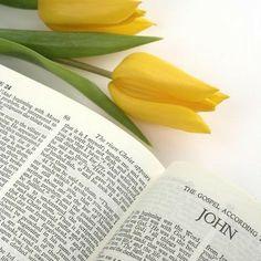 Hoy te invito a disfrutar, y compartir, el programa radial Vive la Biblia. https://soundcloud.com/uicasdehopemedia/sets/vive-la-biblia-1