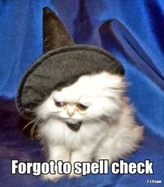 Funny Halloween Jokes | Funny Halloween Cat Witch Spell Check Meme | Funny Joke Pictures