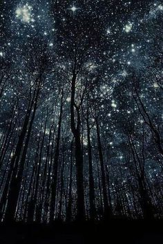 noite n ' oito night n ' eight nacht n ' acht nacht n ' acht noche n ' ocho notte n ' otto nuit n ' huit Beautiful World, Beautiful Places, Beautiful Moon, Nocturne, Night Skies, Sky Night, Forest At Night, Night Time, Night Light