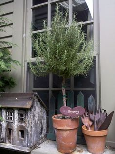 like the pots with old tools - and small 'house' - would look cute with herbs on potting table