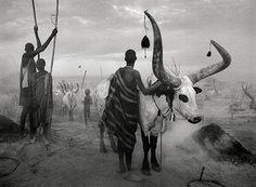 Área Visual: La fotografía documental de Sebastião Ribeiro Salgado