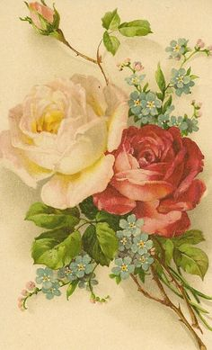 roses & forget-me-nots by in pastel, via Flickr. Reminds me of puctures my Granfms used to cut snd padte inyo a book