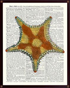 Star fish Poster,Nautical Art,Starfish Art, Sea Star Print,Beach Cottage Decor,Educational Poster,bathroom decor,School decor Starfish SKUS5 by DicosArt on Etsy