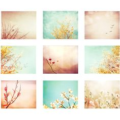 Photography Set of Nine, peach blue coral yellow mint beige aqua teal... ($108) ❤ liked on Polyvore featuring home, home decor, wall art, backgrounds, art, pictures, home wall decor, floral wall art, blue coral wall art and pastel picture