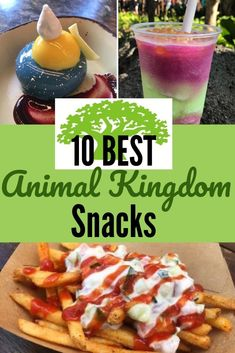 What are the best snacks at Disney's Animal Kingdom? Here are 10 of our favorites. We're going on safari in search of the 10 Best Animal Kingdom snacks. It's home to some of the most unique snacks on Walt Disney World property. Disney World Vacation Planning, Walt Disney World Vacations, Disney Planning, Orlando Vacation, Vacation Ideas, Disney World Essen, Disney World Food, Disney Snacks, Disney Drinks