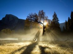 Yosemite in a misty morning slendor via @ReneeBlodgett @WeBlogtheWorld