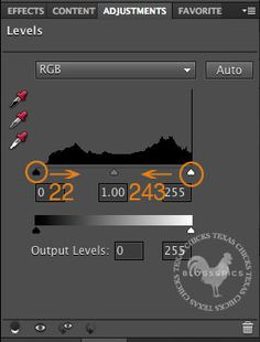 Adjust Contrast in Lightroom and Photoshop Elements