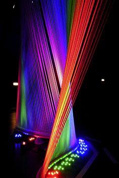 Light Harp Side Peacock | Flickr: Intercambio de fotos