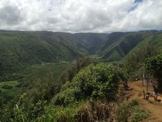 Pololu Valley Lookout #bigisland #hawaii / photo by easyIDcard.com Big Island, Vineyard, Hawaii, Spaces, Mountains, Drawings, Pictures, Travel, Painting