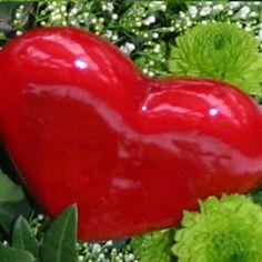 heart is heart