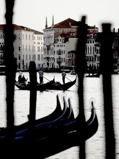 Beautiful photo of the gondolas in Venice Gondola Venice, Republic Of Venice, We Fall In Love, Northern Italy, Small Island, Water Crafts, Eric Lafforgue, Travel Around, Country