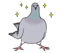 Cute Pigeon by Studio Pigeon Cute Pigeon, Gumball, Homing Pigeons, Decoupage Printables, Mourning Dove, Kawaii Illustration, Dibujos Cute, Line Sticker, Stickers