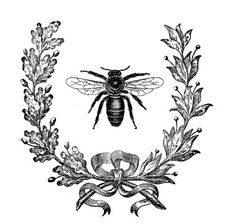 Decorated Chaos: French Bee Picture Using Image Transfer