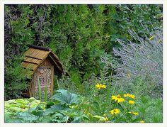 Garten S in N insektenhotel 2011-07 | Flickr - Photo Sharing!